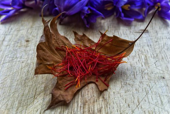 Wholesale saffron spice to buy from markets